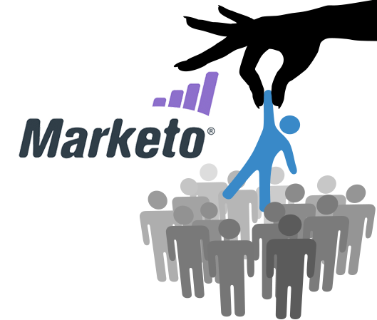 Marketo Management